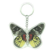Real Red Base Jezebel Butterfly Keyring