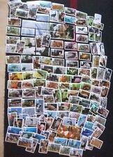"""REWE WWF - 5 Sticker aus allen 180 möglichen """"WWF Tier Abenteuer"""" Bildern wählen"""