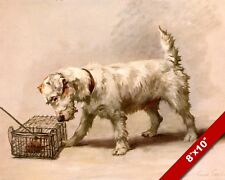 THE FEARLESS SEALYHAM TERRIER PET PUPPY DOG ART PAINTING PRINT ON REAL CANVAS