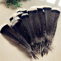 Wholesale unique wild Turkey tail feathers  6-12 inches / 20-30 cm 10-100pcs