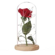 Pink Rose Enchanted Red Silk Rose and LED Light  in Glass Dome on a CLSV