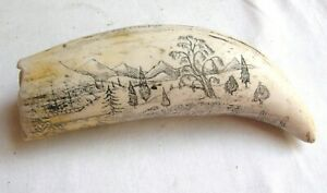 Scrimshaw resin sperm whale tooth depicting the ship 'The Cultivator'