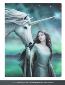 North Star Canvas Plaque By Anne Stokes Size 19x25cm