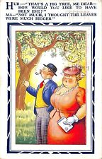 POSTCARD  COMIC    HUMORESQUE   Fig  tree   Eve   larger  leaves....