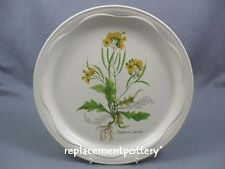Poole Country Lane dinner plate.  26.5 cms in diameter.