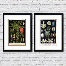Paper Vintage Botanical Art Prints