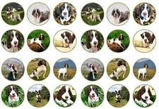 24 english springer spaniels puppy cupcake toppers birthdays party edible paper
