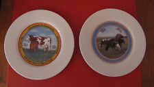 Set of two French 7 1/2 inch porcelain porcelaine plate  bright color cow decor