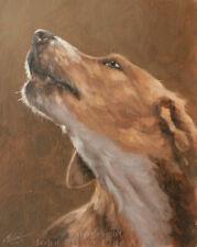 BEAUTIFUL FOXHOUND DOG ORIGINAL OIL PAINTING 10 x 8 inch by JOHN SILVER BA