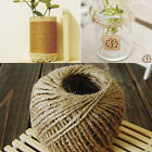 1 Roll 30M Natural Brown Jute Hemp Rope Twine String Cord For Craft DIY Making