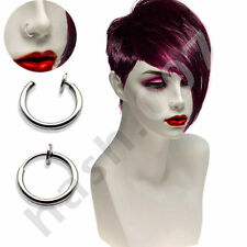 Stainless Steel Hoop Costume Earrings