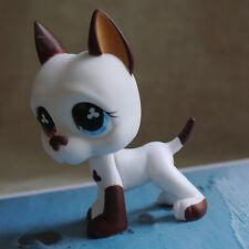 brown white Great Dane Pubby dog LITTLEST PET SHOP LPS mini Action Figures #577