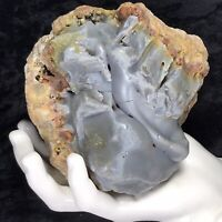 """5"""" Blue Red Botryoidal Chalcedony Agate Crystal Geode Quartz Kentucky Lapidary"""