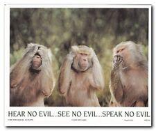 Monkeys Hear No Evil See No Evil Speak No Evil Wall Decor Art Print Poster 8x10