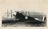1940s  Airplane photo of an earlier RFC Sopwith Strutter, 2 seater, biplane