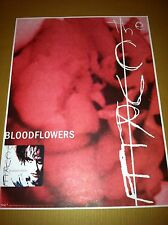 THE CURE 2000 PROMO POSTER for Bloodflowers CD USA MINT 18x24 NEVER DISPLAYED