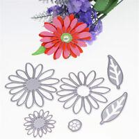 6pcs flower metal cutting dies stencil scrapbook album paper embossing craft  X