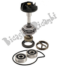2731 - KIT REVISIONE POMPA ACQUA 300 PIAGGIO MP3 - VESPA GTS SUPER - X7 EVO