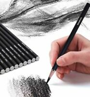 12 Pcs Pencils Set Art Artists Kit Sketching Drawing Graphite Charcoal Pencil