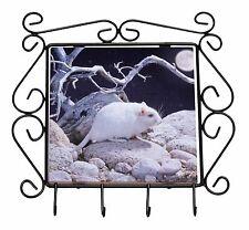 White Gerbil Wrought Iron Key Holder Hooks Christmas Gift, GERB-1KH