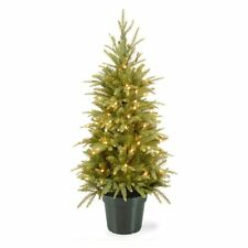 National Tree Company 4 ft. Weeping Full Pre-lit Christmas Tree, Green