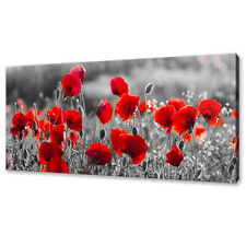 BEAUTIFUL RED POPPIES FLOWERS FIELD MODERN BOX CANVAS PRINT WALL ART PICTURE