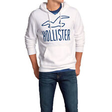 Hollister Hoodies for Men