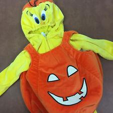 Glow-in-Dark Warner Bros.Tweety Bird Pumpkin Halloween Child Costume 2-piece XS