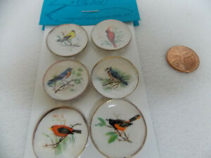 DOLLHOUSE PLATES- 6-PC. BIRDS