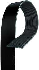Serpentine Belt-Premium OE Micro-V Belt fits 2009 International 9900i 15.2L-L6