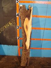 """#8567 Black Walnut Live Edge Slab lumber mantel L 57"""" W 6 1/2"""" T 4"""""""
