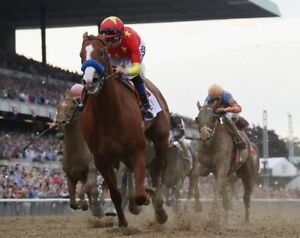 JUSTIFY 8X10 PHOTO HORSE RACING PICTURE JOCKEY BELMONT STAKES WINNER