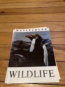 1970 HASSELBLAD WILDLIFE PHOTOGRAPHY GUIDE BROCHURE -HASSELBLAD WILDLIFE