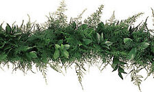 Plumosa Ruscus Garland / 10 ft section / Wholesale / Grower Direct