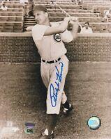 Ralph Kiner Chicago Cubs Autographed 8x10 Baseball Photo CAS COA