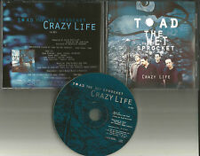 Glen Phillips TOAD THE WET SPROCKET Crazy Life 1997 USA PROMO DJ CD Single MINT