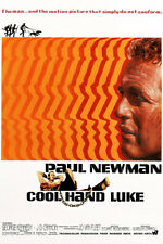 Cool Hand Luke Vintage Paul Newman Movie Poster