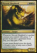 Mycoid Shepherd LP Alara Reborn MTG Magic Cards Gold Rare