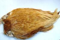 Cou de coq Indien ROUX montage mouche  cock neck rooster cape hackle