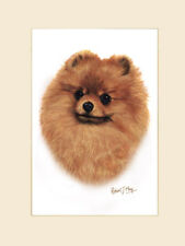 Original Pomeranian Painting by Robert J. May