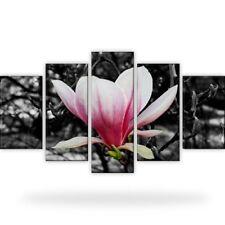 Magnolie Blumen Natur Bild Bilder Wandbild Kunstdruck  5 Teilig Xxl