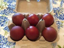 5+ Purebred French Black Copper Marans Chicken Hatching Eggs NPIP-GFF, Peddler