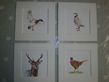 "Watercolour Stag, Pheasant,Duck, Partridge  Prints 10"" x 10""  mounts"