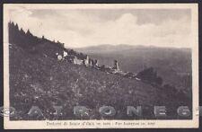 TORINO SAUZE D'OULX 22 SALICE D'ULZIO Cartolina viaggiata 1930