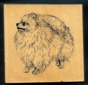 POMERANIAN DOG BREED 24013 House Pet Puppy STAMP GALLERY New Wood Mount Rubber