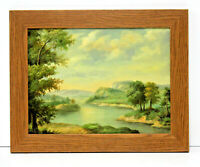 Lake Country Landscape 12 x 16 Art Oil Painting on Canvas w/Custom Style Frame