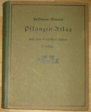 Hoffmann Dennert Pflanzen Atlas nach dem Linnéschen System Handbuch Flora 1918
