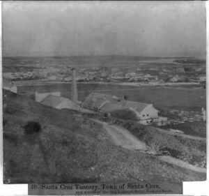 Santa Cruz Tannery,Town of Santa Cruz,San Lorenzo River,1866,Cityscape 3522