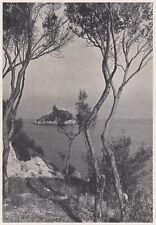 D3502 L'isolotto di Bergeggi - Stampa d'epoca - 1940 vintage print
