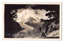 Mt. Rainier National Park real photo postcard Mtn & Emmons Glacier from Sunrise